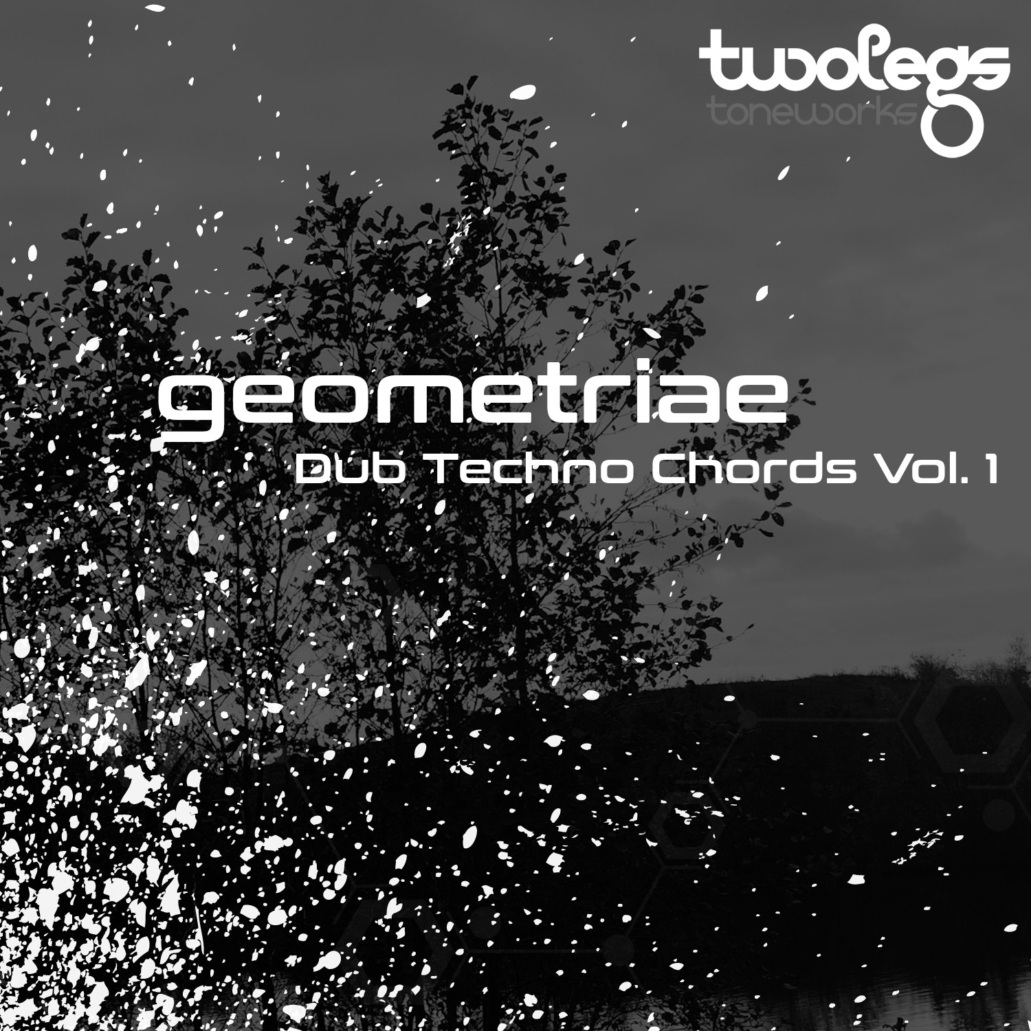 Dub Techno Chords Vol. 1