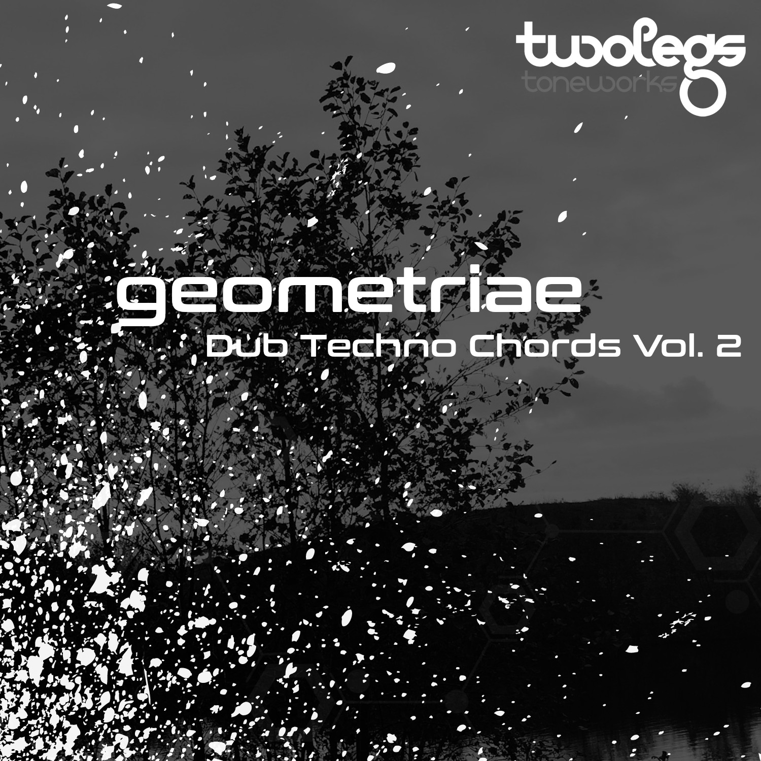 Dub Techno Chords Vol. 2